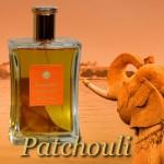 les ecuadors parfum patchouli